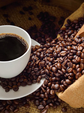 THERMOS DE CAFE (POUR 8 PERSONNES)